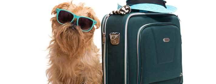 3 Travel Safety Tips You Can't Ignore